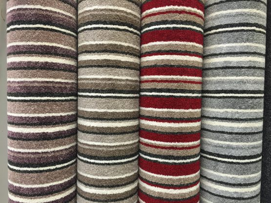 Luxurious Saxony Stripe